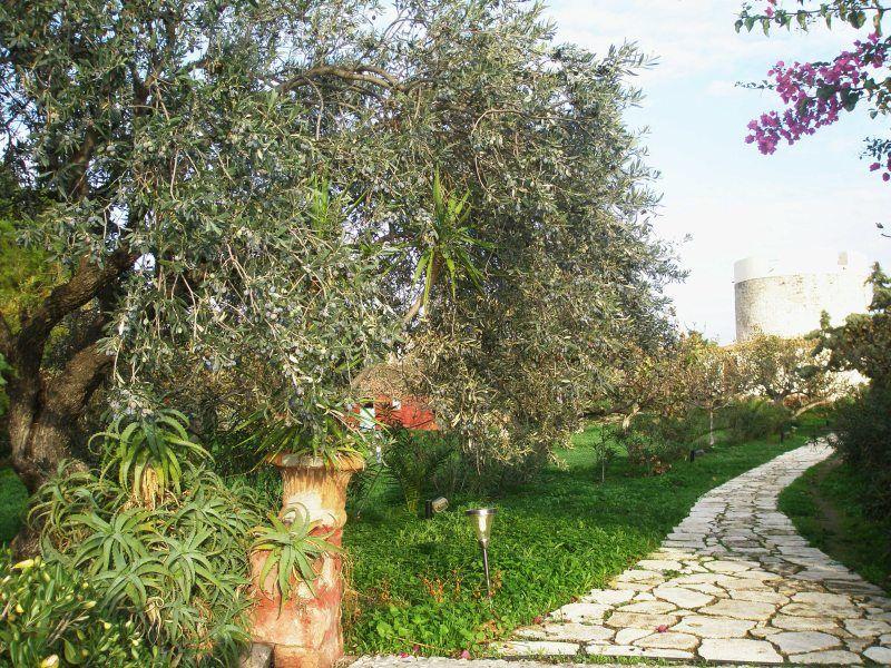 Земельный участок в остров Порто Рафти